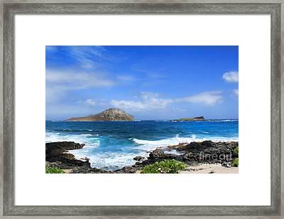 Rabbit Manana Island Oahu Hawaii Framed Print by Leslie Kirk
