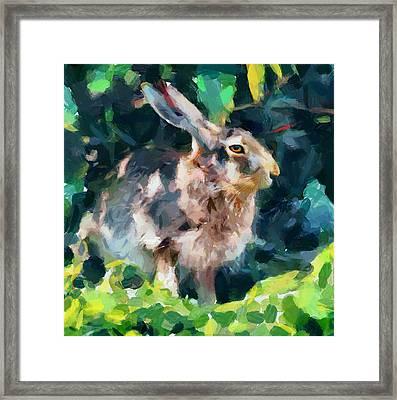 Rabbit On Alert Framed Print by Yury Malkov