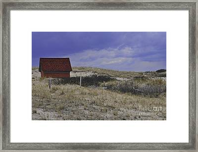Race Point Light Shed Framed Print by Catherine Reusch  Daley