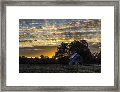 Radiating Sunrise Framed Print by Amber Kresge