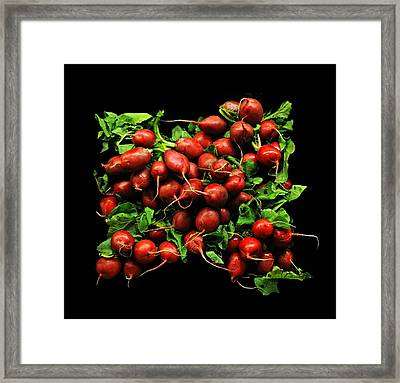 Radishes  Framed Print by Diana Angstadt