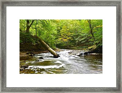 Raging River Framed Print by Frozen in Time Fine Art Photography