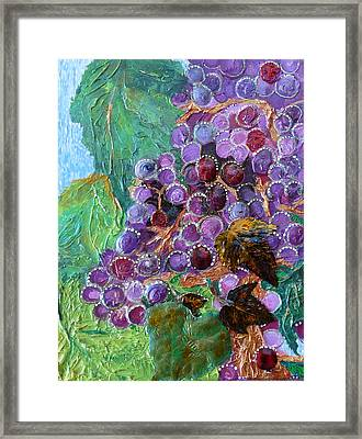 Rain In The Vineyard Framed Print by Rhonda Chase