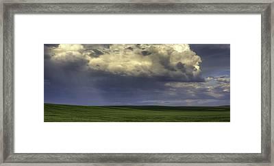 Rain On Green Framed Print by Latah Trail Foundation