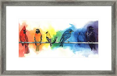 Rainbow Birds Framed Print by Antony Galbraith