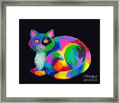 Rainbow Calico Framed Print by Nick Gustafson