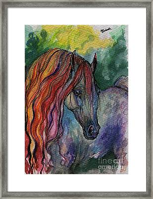 Rainbow Horse 3 Framed Print by Angel  Tarantella