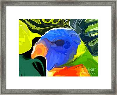 Rainbow Lorikeet Framed Print by Chris Butler