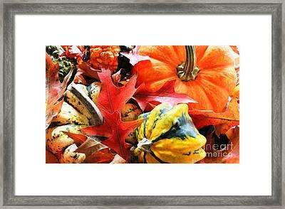 Rainbow Of Autumn Colors Framed Print by Judy Palkimas