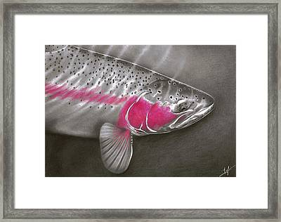 Rainbow Release Framed Print by Nick Laferriere