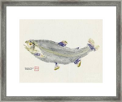 Rainbow Trout On Muslin Framed Print by Matt Monahan