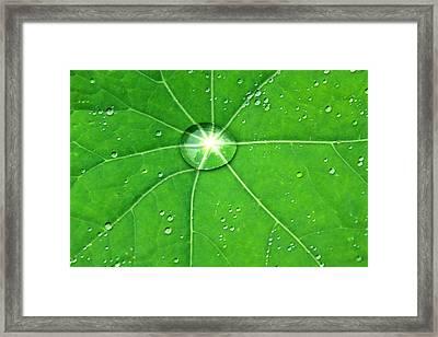 Raindrop Junction Framed Print by Aidan Moran