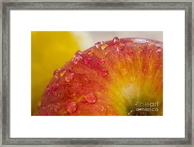Raindrops On An Apple Framed Print by Warrena J Barnerd