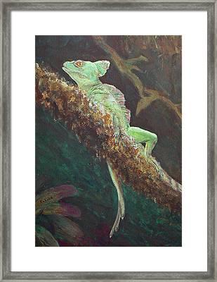 Rainforest Basilisk Framed Print by Margaret Saheed