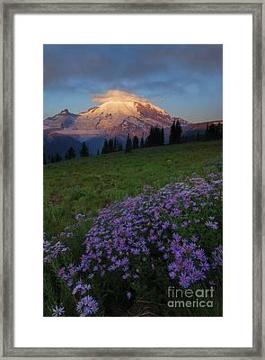 Rainier Morning Cap Framed Print by Mike  Dawson