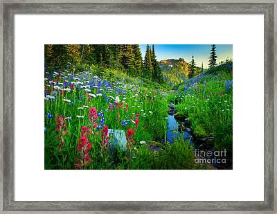 Rainier Wildflower Creek Framed Print by Inge Johnsson