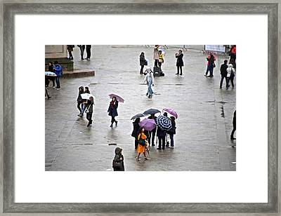 Rainy Day Framed Print by Randi Shenkman