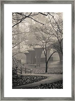 Rainy Morning Framed Print by Trish Tritz