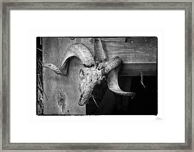 Ram's Head - Art Unexpected Framed Print by Tom Mc Nemar