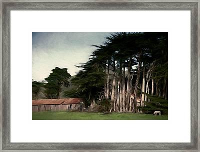 Ranch With Cypress Framed Print by John K Woodruff