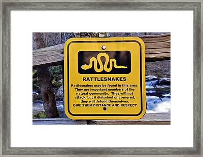 Rattlesnakes Framed Print by Susan Leggett