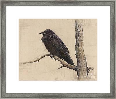 Raven Framed Print by Lori  McNee
