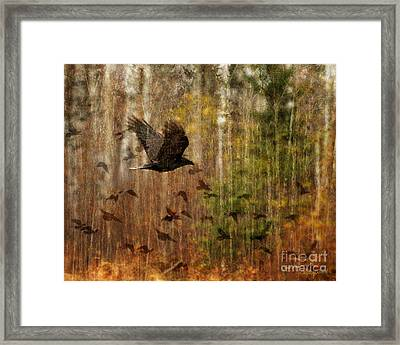 Raven Wood Framed Print by Judy Wood