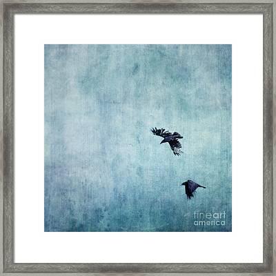 Ravens Flight Framed Print by Priska Wettstein
