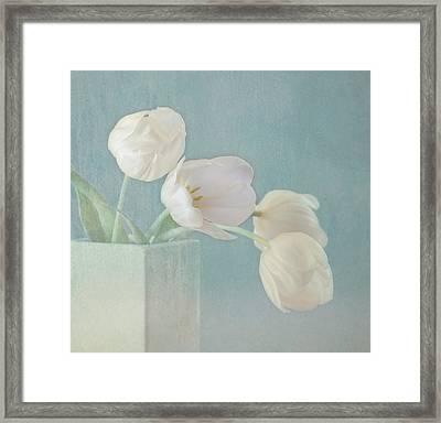 Ray Of Beauty Framed Print by Kim Hojnacki