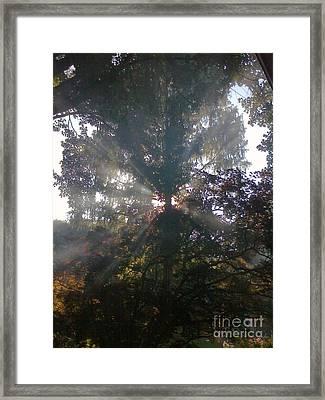 Rays Framed Print by James McAdams