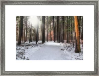 Rays Of Light Framed Print by Andrea Galiffi