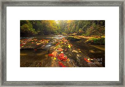 Reach Five Framed Print by Matt Tilghman