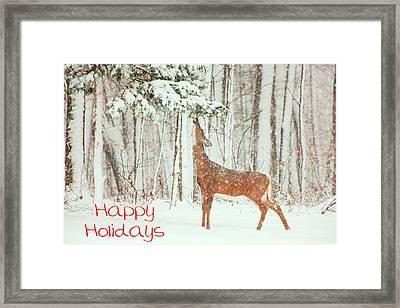 Reach For It Happy Holidays Framed Print by Karol Livote