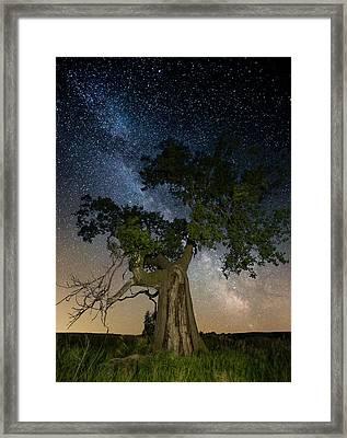 Reach For The Stars Framed Print by Aaron J Groen