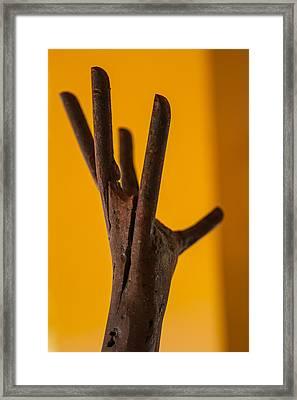 Reach Framed Print by Scott Campbell