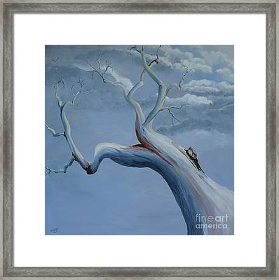 Reaching For The Skies Framed Print by Merrin Jeff