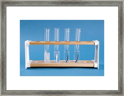Reactivity Of Magnesium Framed Print by Trevor Clifford Photography