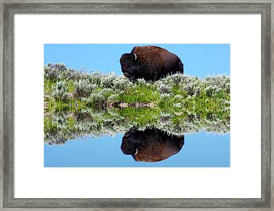Ready For A Drink Framed Print by Shane Bechler