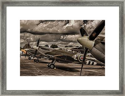 Ready For Action Framed Print by Martin Newman