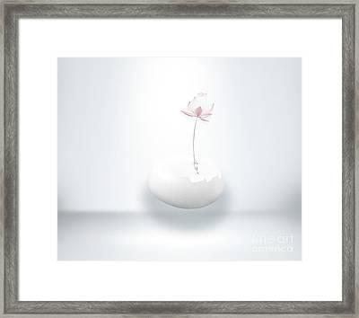 Rebirth Framed Print by Jacky Gerritsen