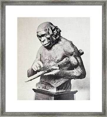 Reconstruction Of Piltdown Man Framed Print by Paul D Stewart