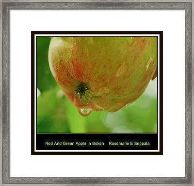 Red And Green Apple In Bokeh Framed Print by Rosemarie E Seppala
