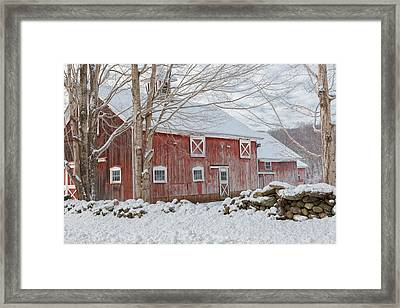 Red And White Framed Print by Bill Wakeley