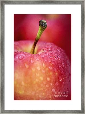 Red Apple Macro Framed Print by Elena Elisseeva