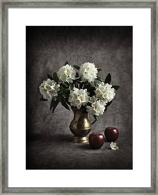 Red Apples And White Rhododendron Framed Print by Jitka Unverdorben