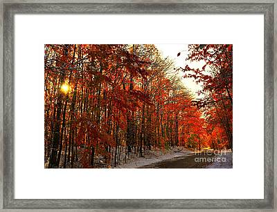 Red Autumn Road In Snow Framed Print by Terri Gostola