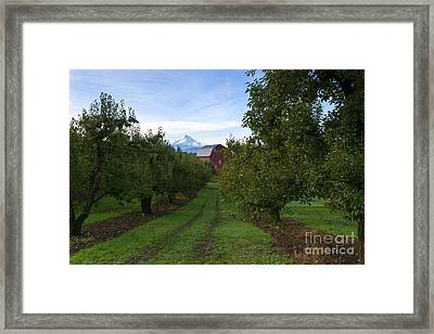 Red Barn Mountain Framed Print by Mike Dawson