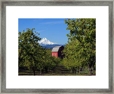 Red Barn View Framed Print by Mike Dawson