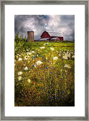 Red Barns In The Wildflowers Framed Print by Debra and Dave Vanderlaan