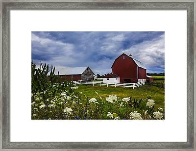 Red Barns Under Blue Skies Framed Print by Debra and Dave Vanderlaan